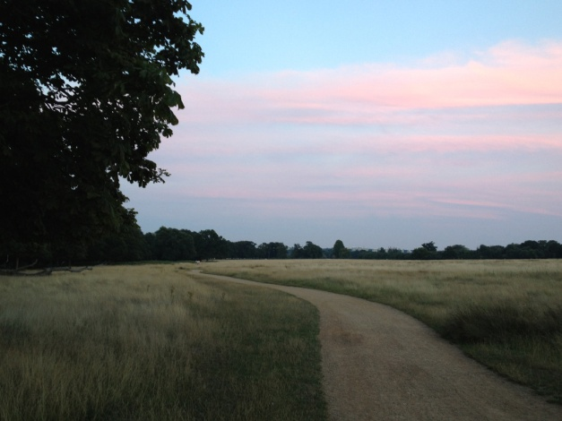 Richmond Park - Sunset